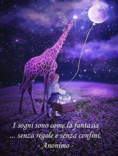 Sogni....