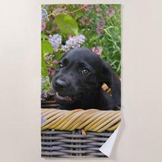 Cute Black Labrador Retriever Dog Puppy Pet Photo Beach Towel - dog puppy dogs doggy pup hound love pet best friend