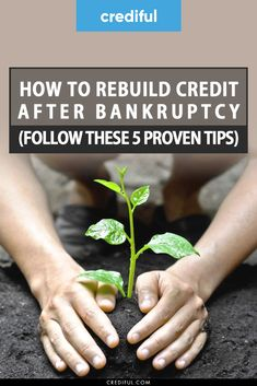 Bankruptcy doesn't ruin your credit forever. Find out step by step how to repair your credit after going through both Chapter 7 and Chapter 13 bankruptcy. Fix Your Credit, Build Credit, Credit Score, Fast Cash, Make Money Fast, Money Tips, Money Saving Tips, Wisconsin, Rebuilding Credit