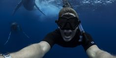 Let's go beyond the tags - these Instagram accounts take you to a whole new level of ocean life!