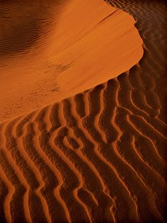 patterns in the sand dune
