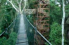 inkaterra reserva amazonica - Google Search