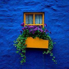 Beautiful window box display from a house in Kinsale County ,Cork Ireland