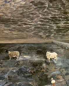 Proverb - Deborah Poynton South African Art, Nude Portrait, Landscapes, Artists, Fantasy, Fine Art, Sea, Club, Inspired