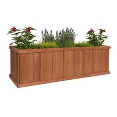 The giant Churchill Cedar Planter Box is perfect for herb or vegetable gardening and is far more attractive than mundane raised bed planters. Or it can be used as a deck box to grow small trees or Large Planter Boxes, Cedar Planter Box, Plastic Planter Boxes, Window Planter Boxes, Large Planters, Diy Planter Box, Corten Steel Planters, Wood Planters, Hanging Planters