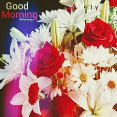 Good Morning Flowers Gif, Good Morning Picture, Morning Pictures, Good Morning Wishes, Good Morning Images, Morning Qoutes, Morning Greetings Quotes, Morning Messages, Indian Flowers