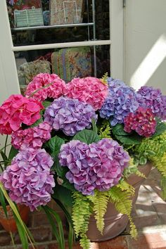 My Painted Garden ~ Beautiful hydrangeas... one of the most beautiful flowers on earth!