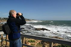 Cambria...watching for whales on the wooden boardwall close to the beach.  Great Scenery to enjoy while touring California's Central Coast! http://www.cheers2wine.com/central-coast-wine-tasting.html