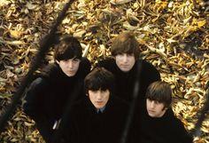 Paul McCartney, John Lennon, George Harrison, and Richard Starkey (Beatles For Sale)