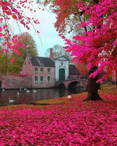 What a beautiful place! Bruges, Belgium Photo by Beautiful Places To Visit, Wonderful Places, Beautiful World, The Places Youll Go, Places To Go, Places To Travel, Travel Pics, Travel Trip, Travel Guide