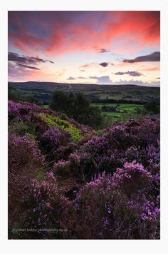 Norland Moor, Calderdale, West Yorkshire | Actually made it out with the camera this evening - first time in a while. Mind you only managed to grab 5 mins before all light and colour was lost...