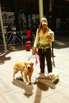 My two pups, Maddie and Lia! in Chicago #LoveInAction