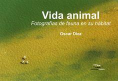 """Presentación en Madrid del libro """"Vida animal"""", de Óscar Díez - http://www.aefona.org/presentacion-del-libro-vida-animal-oscar-diez/"""