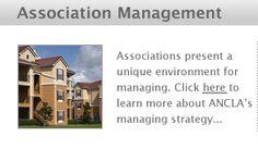 Ancla Management