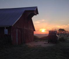 Life on the farm blog - Hello, Indiana! - Kolb Homestead, Indiana Homesteading, Indiana, farm, homestead