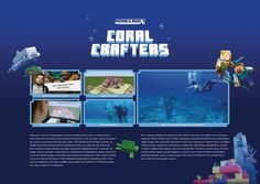 Concept Board, Sustainable Development, Cannes, Sustainability, Coral, Boards, Planks