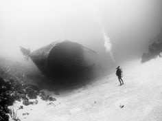 National Geographic's Photo Of The Day: Hull-o