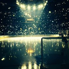 Sometimes hockey can be pretty such a breathtaking photo reminds me of when I was at TD garden