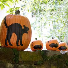 Halloween crafts ...  Cool Cat (and Mice)  Use our templates at LHJ.com/pumpkintemplates to transfer the cat and mouse patterns to one large and three small pumpkins. Carefully fill in the outlines with a black paint pen. Display the cat chasing the mice along a porch, your front steps, an outdoor wall, or even your mantel.