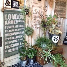 On Walls,観葉植物,ディスプレイ,タペストリー,フェイクグリーン,サリュ,植物のある部屋,東京堂,グリーンインテリア,植物好き,植物色々,アンティークドア風,ロールサインタペストリー,antqiueのインテリア実例 | RoomClip (ルームクリップ)