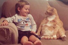 Conoce la historia de Larry, el gato que fue abandonado y ahora es el mejor amigo de este niño [FOTOS]