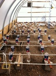 Greenhouse Hydroponic / Aquaponic System #diy #garden