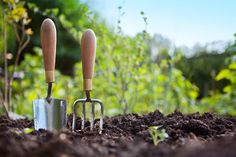 "How to Save Money with Gardening. Money Saving Gardening Tips and Tricks from Gardeners Melbourne Best gardening Services in Melbourne call now 0391110262 <a rel=""noreferrer nofollow"" target=""_blank"" href=""http://www.gardeners-melbourne.com/money-saving-gardening-tips"">http://www.gardeners-melbourne.com/money-saving-gardening-tips</a>/"