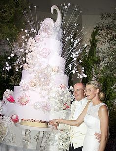 I don't care if it IS from the royal wedding in Monaco and probably cost more than my house. That cake is a DON'T.