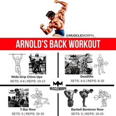 """Train Your Back Like Arnie LIKE/SAVE IT if you found this useful. FOLLOW @musclemorph_ for more…"""