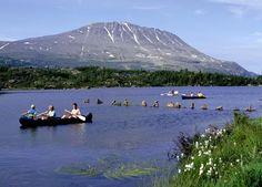 Jeg skriver til udlejeren om hvad som er nærmest kano udleje.  http://www.visitrjukan.com/aktiviteter/vannaktiviteter?lang=no&id=36598#main