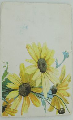 VTG Postcard Yellow Daisy Wild Field Flowers #Friendship