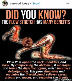The Plow Stretch #stretchingroutine