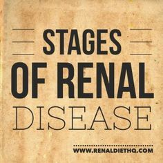 It can be very easy to get lost in all of the medical jargon and rhetoric when it comes to medical diagnosis. Often, everything your doctor says comes out sounding like another language. Understanding renal disease can help you to better understand your t Renal Diet Menu, Dialysis Diet, Kidney Dialysis, Stage 3 Kidney Disease, Chronic Kidney Disease, Kidney Detox, Kidney Health, Kidney Flush, Kidney Foods