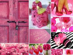 Fuchsia pink wedding colors