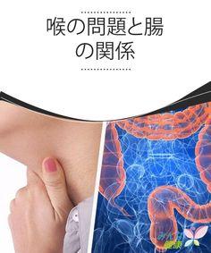 喉の問題と腸の関係 体は全身の温度を均等にしようとするので、お湯に20分間足を浸すと、喉の腫れが和らぎます。
