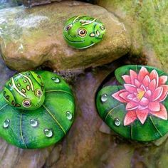 Pebbles and stones - frogs. Painted Rock Cactus, Painted Rocks Craft, Stone Crafts, Rock Crafts, Frog Rock, Rock Painting Designs, Painted Wine Glasses, Pebble Art, Stone Art