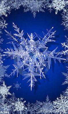 Любители красивых картинок ;) В Кругу Друзей — социальная сеть Snow Gif, Service Map, All That Glitters, Winter Wonderland, Illusions, Snowflakes, Dandelion, Merry Christmas, Animation