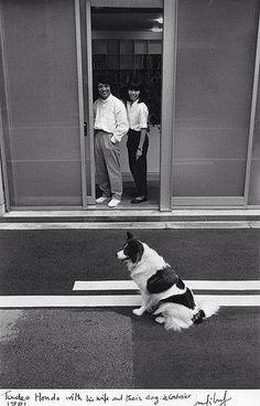 """Tadao Ando con su mujer y su perro, Le Corbusier, en 1991, """"UNA VENTANA DE PERROS"""", http://www.santiagodemolina.com/2014/11/una-ventana-de-perros.html"""