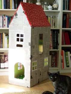 cat house - Olivia can make this for chip!!!!!