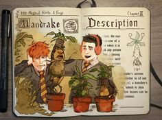 """The cry of the Mandrake is fatal to anyone who hears it.""  Support my Patreon! Harry Potter Journal, Harry Potter Notebook, Harry Potter Fan Art, Harry Potter Fandom, Harry Potter Universal, Harry Potter Books, Harry Potter World, Patronus Meaning, Hogwarts"