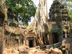 Eine Reise nach Thailand beginnt in der Regel in Bangkok – so auch die Meine. Zwei Wochen ging es durch Thailand und eine Woche durch Kambodscha. Und um schon mal eine Sache vorwegzunehmen, w…
