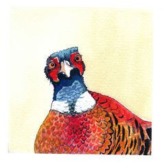 Looks like my crazy quails :D Watercolor Bird, Watercolor Paintings, Watercolours, Cool Art, Awesome Art, Outdoor Dog, Wildlife Art, Pheasant, Bird Art