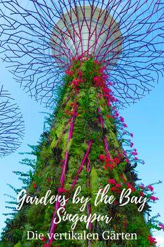Gardens by the Bay - Die vertikalen Gärten Singapur hat einen der prächtigsten und faszinierendsten Gärten der Welt: die Gardens by the Bay. Am auffälligsten sind die Supertrees die tatsächlichen vertikalen Gärten.