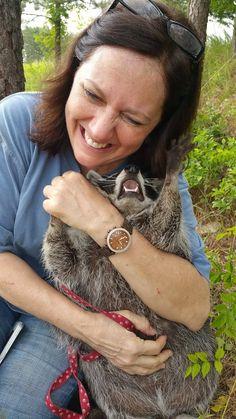Pet raccoon was not having it on Pet Raccoon, Cool Iphone 6 Cases, Wood Watch, Etsy Store, My Love, Accessories, Instagram, Creatures, Facebook