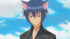 fiction charact, neko mimi, ikuto tsukiyomi, shugo chara, charact crush