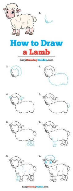 Learn to draw a lamb. This step-by-step tutorial makes it easy. Kids and beginners alike can now draw a great looking lamb. Cute Easy Drawings, Art Drawings For Kids, Drawing For Kids, Baby Animal Drawings, Horse Drawings, How To Draw Hair, Learn To Draw, Lamb Drawing, Drawing Tutorials For Kids