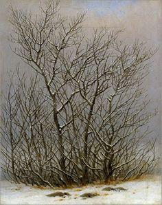Caspar David Friedrich (1774–1840), Bushes in the Snow, ca. 1827/28, Staatliche Kunstsammlungen, Dresden