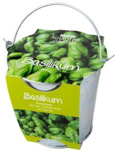 Pflanzset in Zinkeimer, Basilikum - Basilikum - verströmt den Duft des Südens. In der Küche vielseitig zu verwenden. Basilikum können Sie ganzjährig aussäen. Drücken Sie die Samen nur leicht an und ha