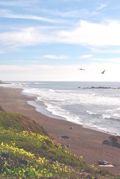 Day Trip: Cambria Ca