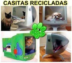 Recycle old monitor into a cat bed Monitor, Old Computers, Space Cat, Pet Home, Animal Wallpaper, Animal House, Pet Beds, Beautiful Cats, Cat Love